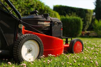 Best Petrol Lawn Mowers 2020 Buyers Guide