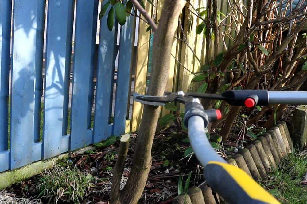 Stanley FatMax Loppers on large branch