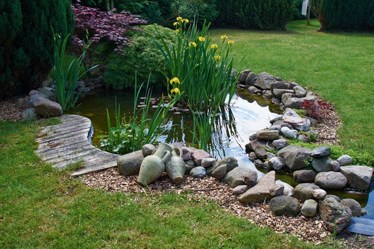 image of beautiful pond for best pond pumps article