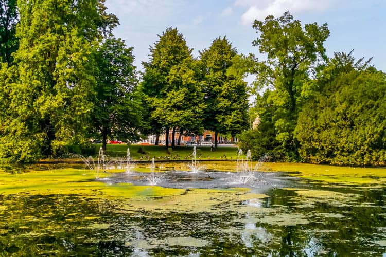Fountain Pond Pumps
