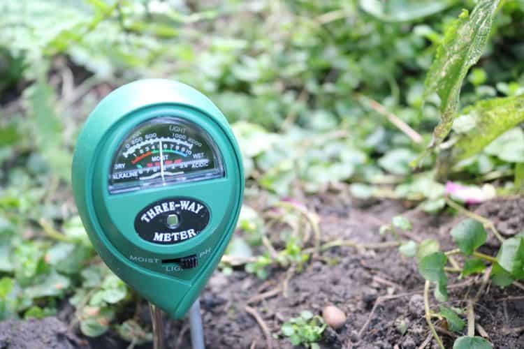 soil ph tester in soil