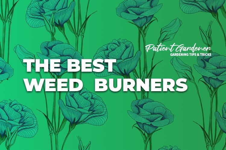 Best Weed Burners