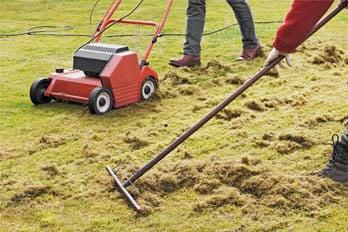 Best Electric Lawn Rake