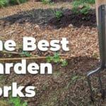 The Best Garden Forks