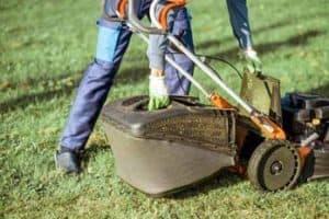 Best Professional Lawn Mowers