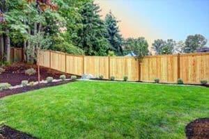 best lawn mower for small gardens fetaured
