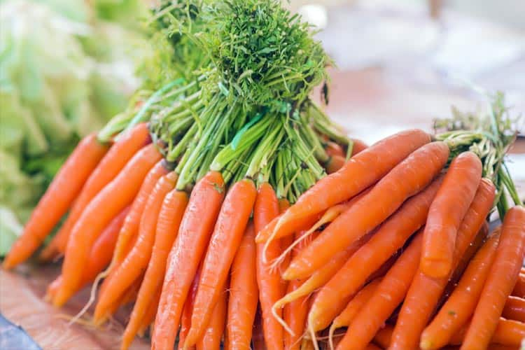 vegetables to grow in pots over winter