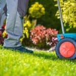 Sowing Grass Seed on a Existing Lawn
