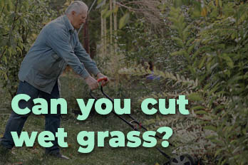 can you cut wet grass